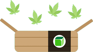 Cannabox 1 month subscription