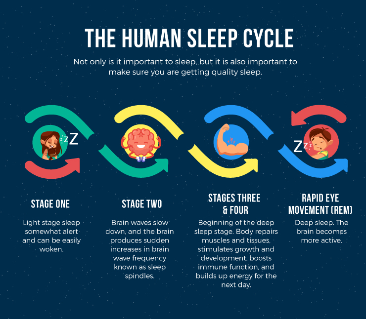 How-Do-Your-Sleep-Patterns-Compare-to-the-Most-Successful-infographic_04
